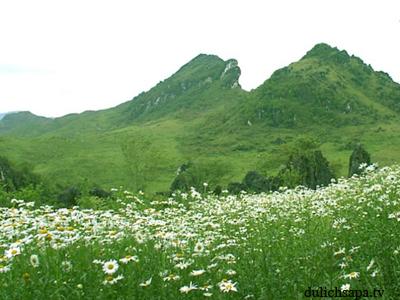 Núi Hàm Rồng điểm đến hấp dẫn.