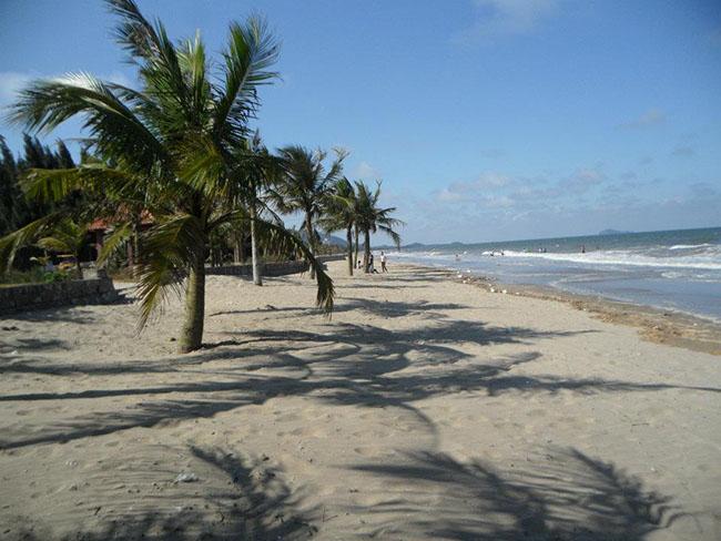 Khung cảnh biển Hải Tiến với rừng dừa xanh bát ngát